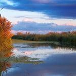 Workshop de fotografie în Delta Dunării