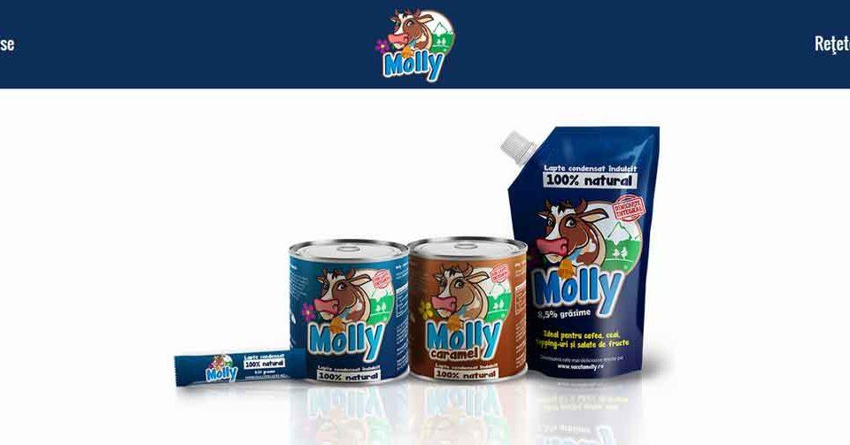Web design: site de prezentare produs: lapte condensat îndulcit MOLLY®